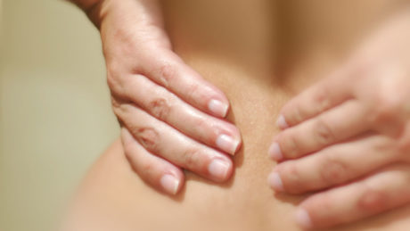 Acupuncture CEUs Sciatica Anatomy and Physiology